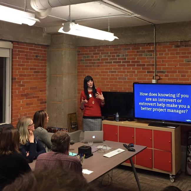 Ashley Janssen DMP Meetup presentation