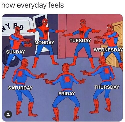 spiderman every day is the same.jpeg
