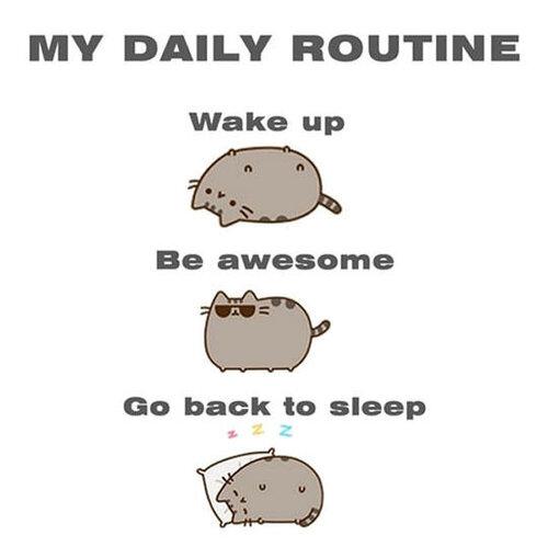 daily routine.jpg