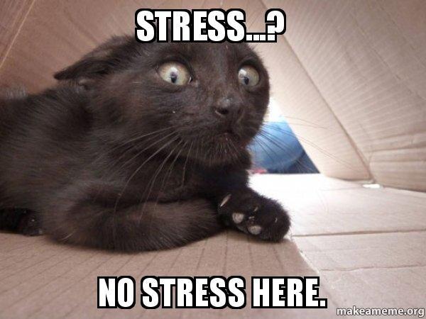 stress-no-stress.jpeg