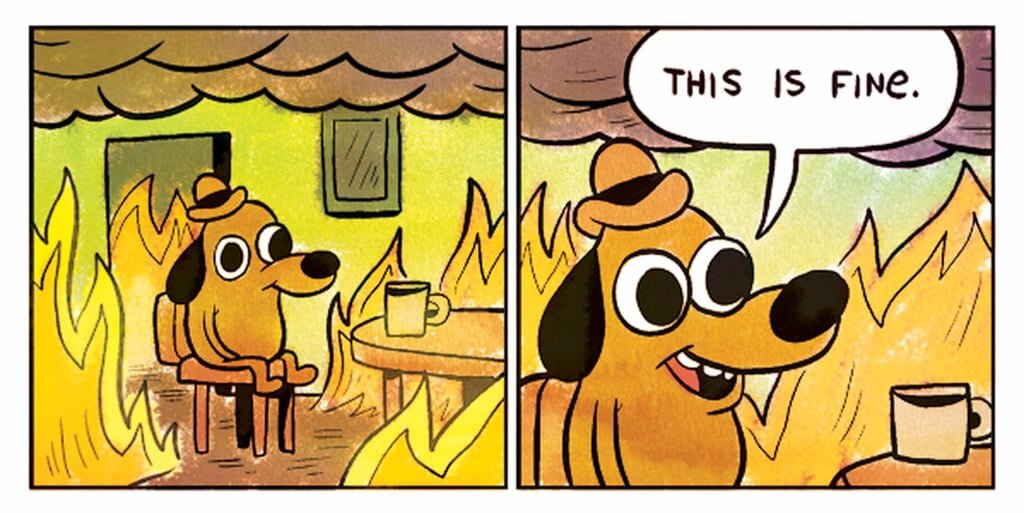 This is Fine.jpeg