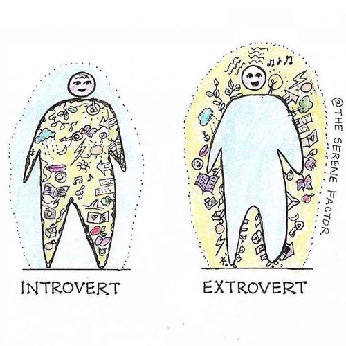 Introverts vs Extroverts.jpeg