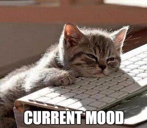 Current Mood - Languishing.jpeg