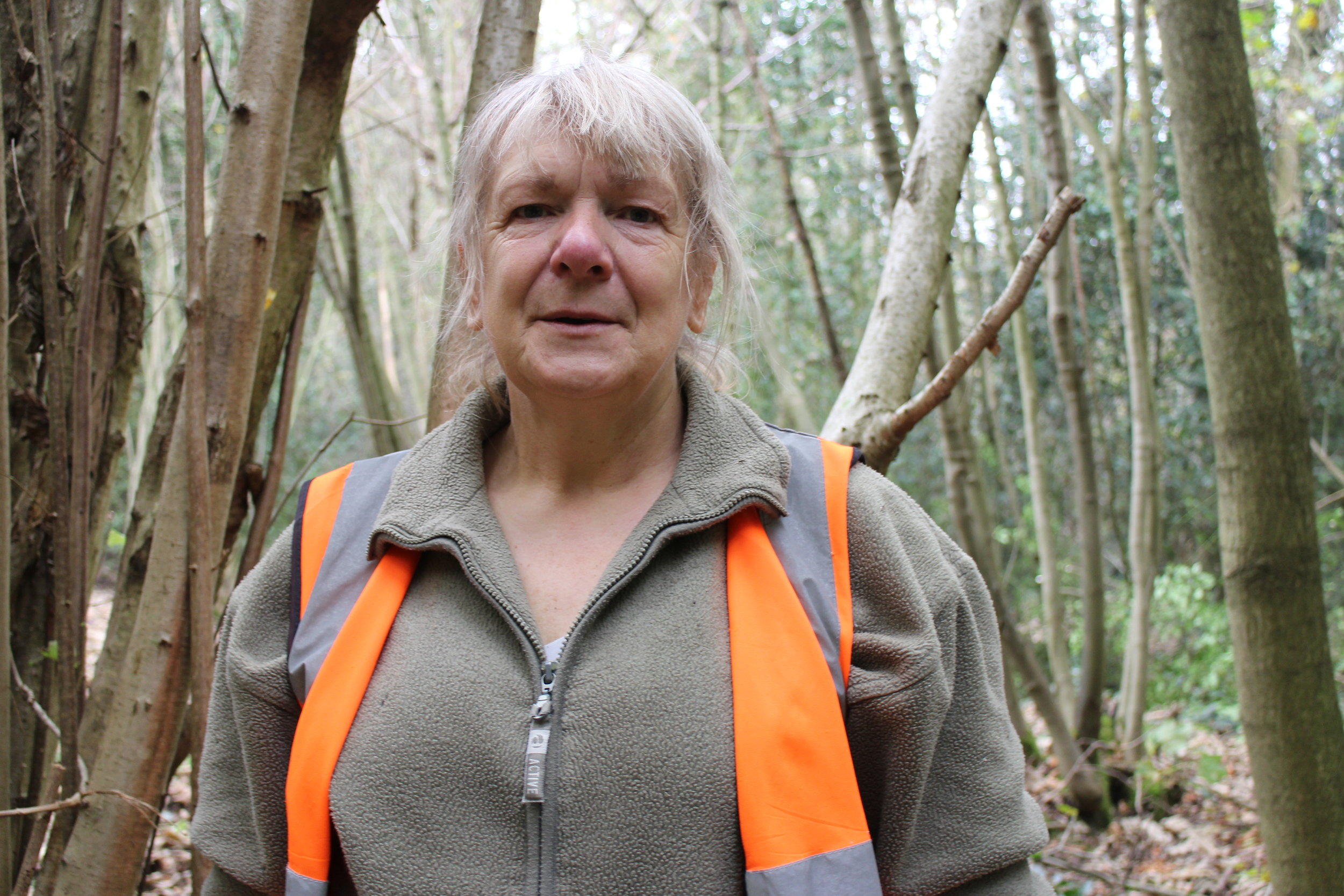 ELAINE BLEWITT   Elaine manages our workdays. Come along to meet her and help with our work in the park!