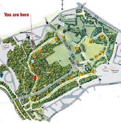 map_acorn_03.JPG