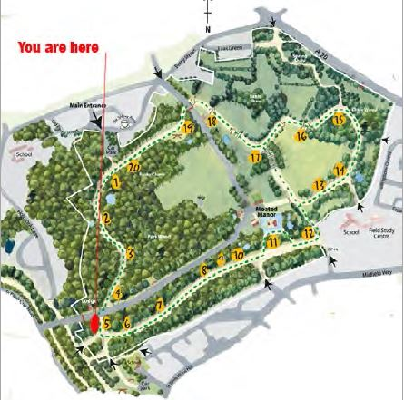map_acorn_05.JPG
