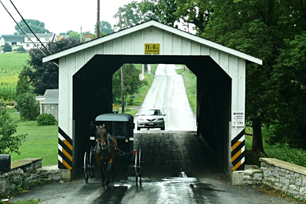 Eshleman's Mill Covered Bridge with Amish buggy.  Photo by Ad Meskens via  Wikimedia Commons .