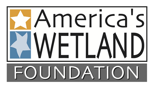 Americas_Wetland_Foundation_logo_thumb.png