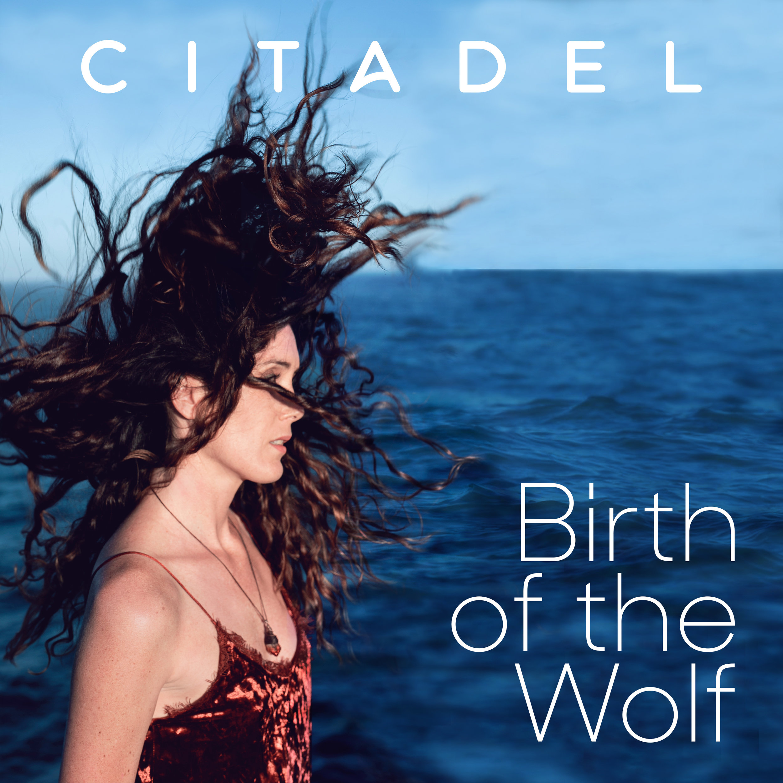 Birth Of The Wolf - 1. Birth Of The Wolf2.The Witness3. Divine Feminine4.Feel It All5. Fire Of Kali6. The Other Side7. Everybody's Free8. Shadow9. Version 2.010. Only Time11. Earth12. Put Out Fire13. Woken UpBuy on iTunesStream on Spotify