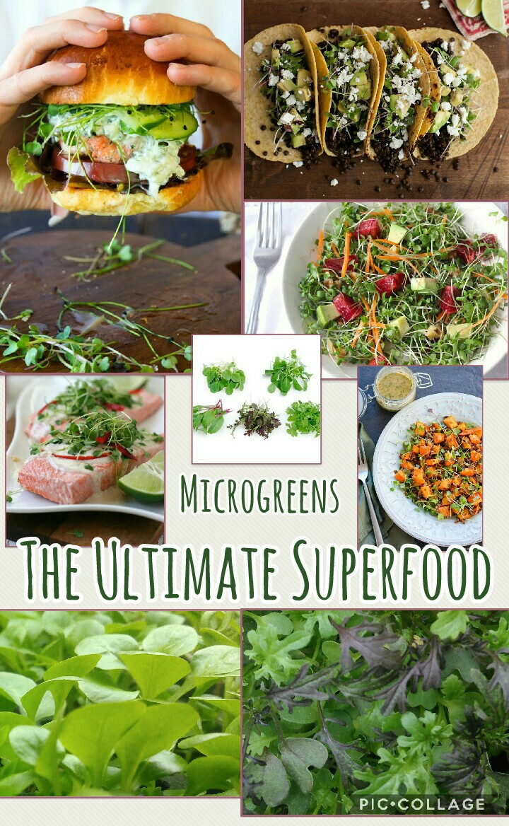 Collage 2017-11-22 Superfood.jpg