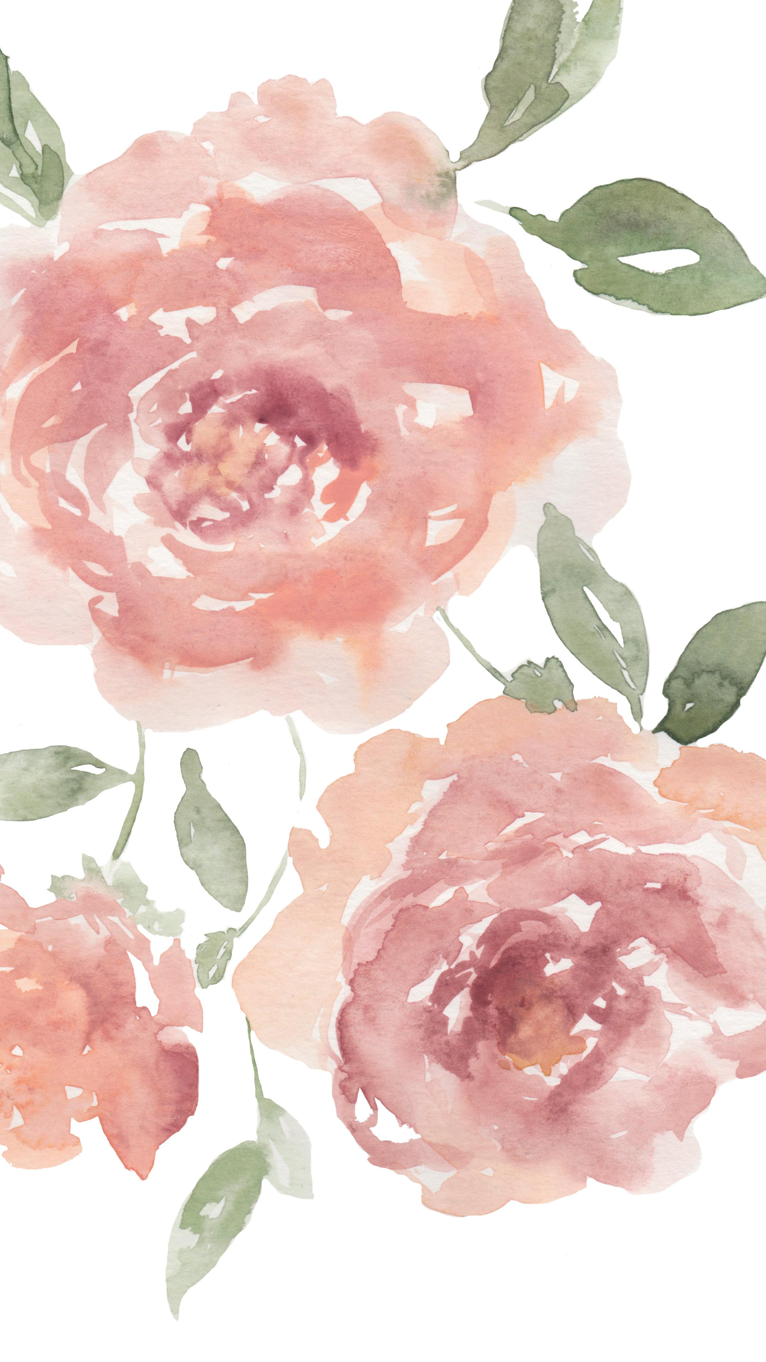 Ella Rose Farm-64.jpg