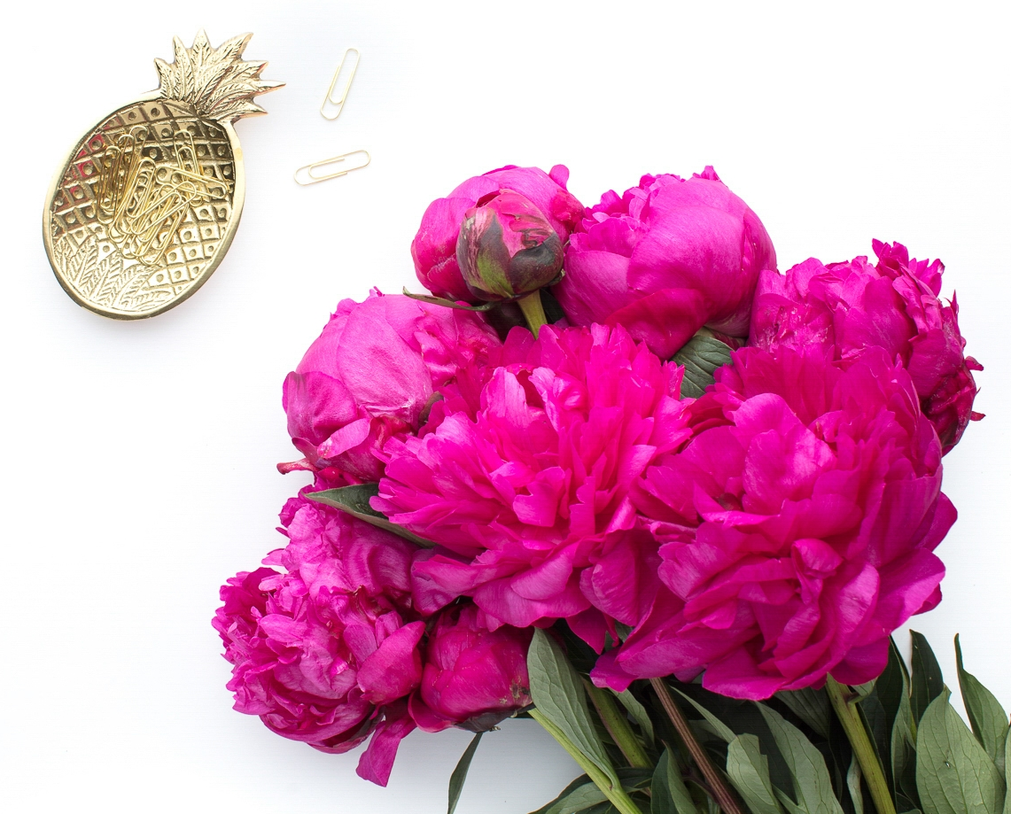 Red Twig Farm's famous Peonies will be available at  Ampersand Gift Bar  Next Month!