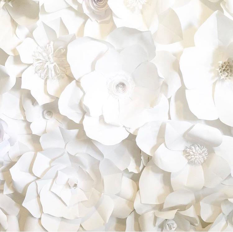 paper flower making class mansfield, ohio Ampersand Gift Bar