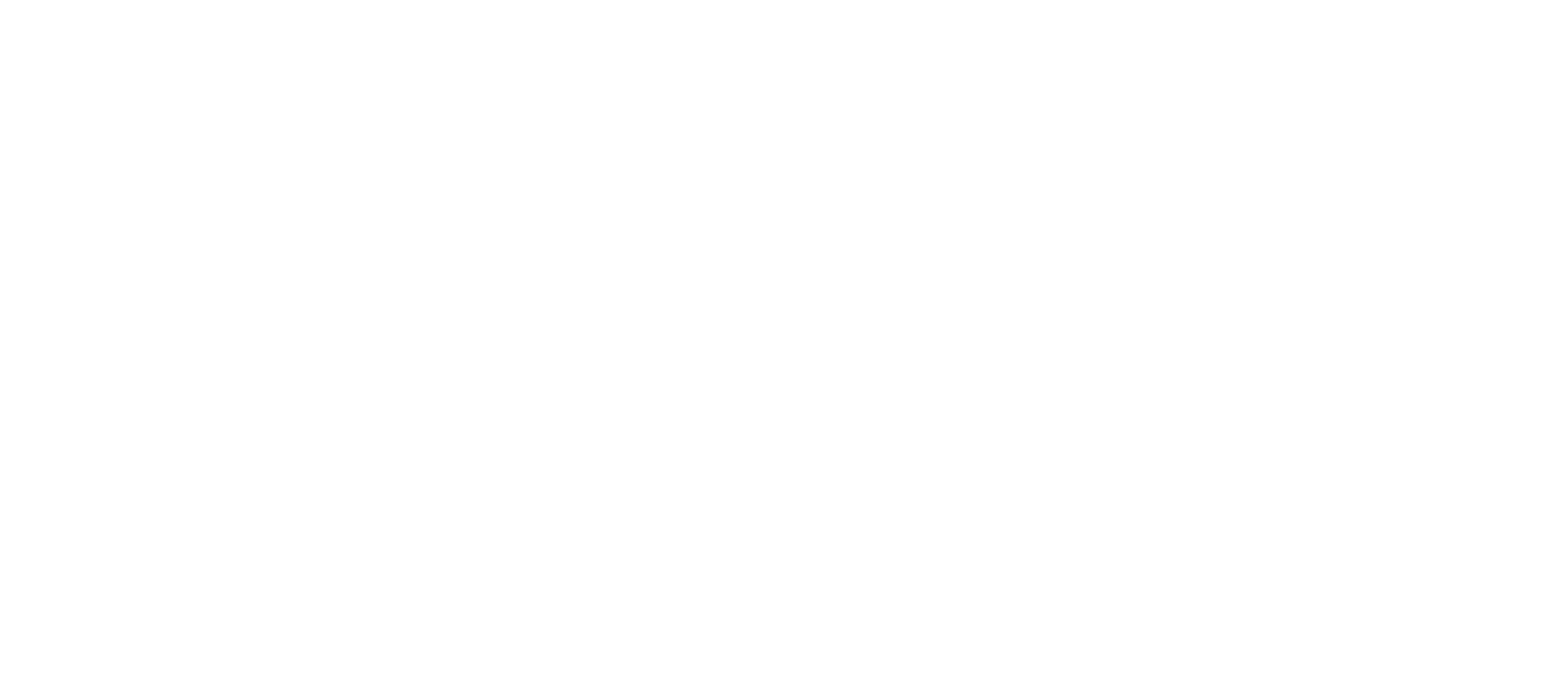 Yolo_for_Bolo.png