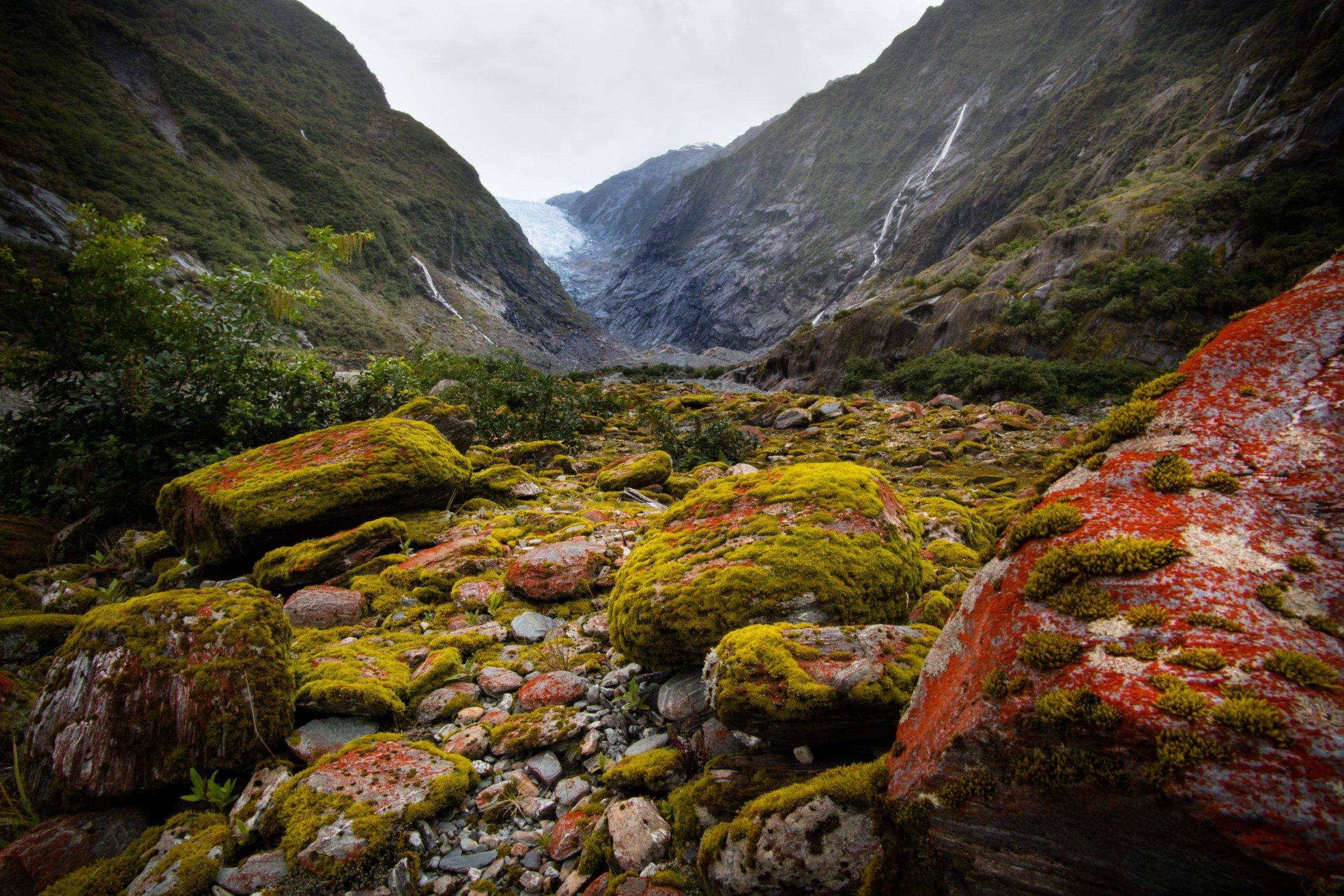 Franz Joseph Glacier, New Zealand.