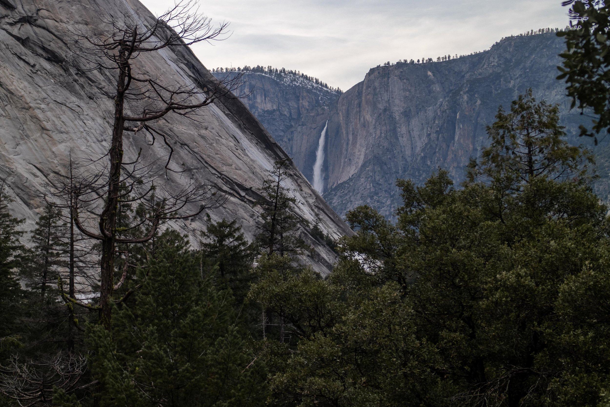Yosemite Falls from afar.