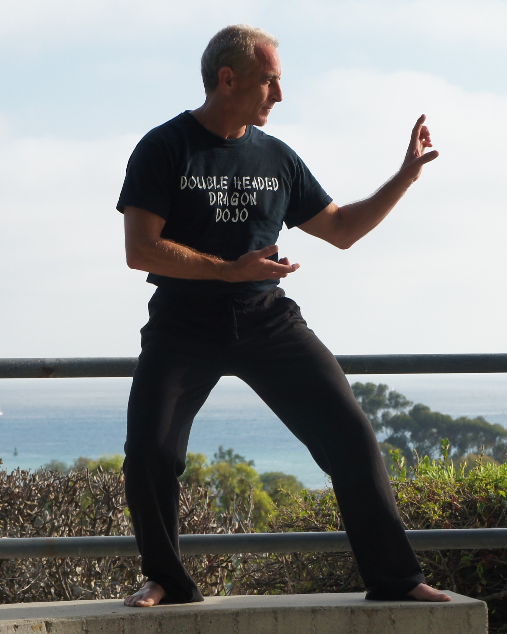 "Rob Linzy   An expert in Tai Chi and Wu Shu, as well as an author of the book ""How to Heal Yourself""."