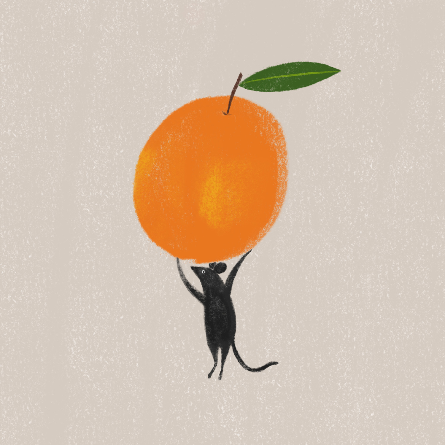 allierunnion-illustration-orangemouse-1500.jpg