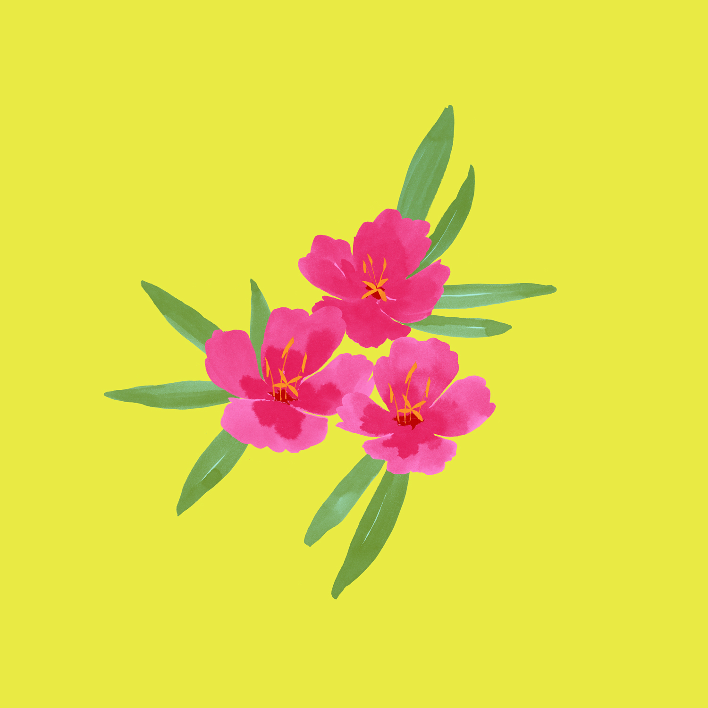 pinkflowersonyellow-1500.jpg