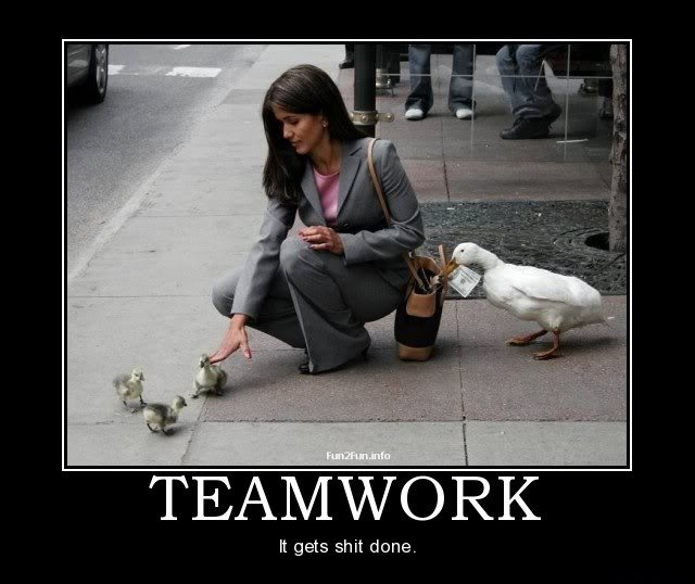 humorous-teamwork-quote-2-picture-quote-1.jpg