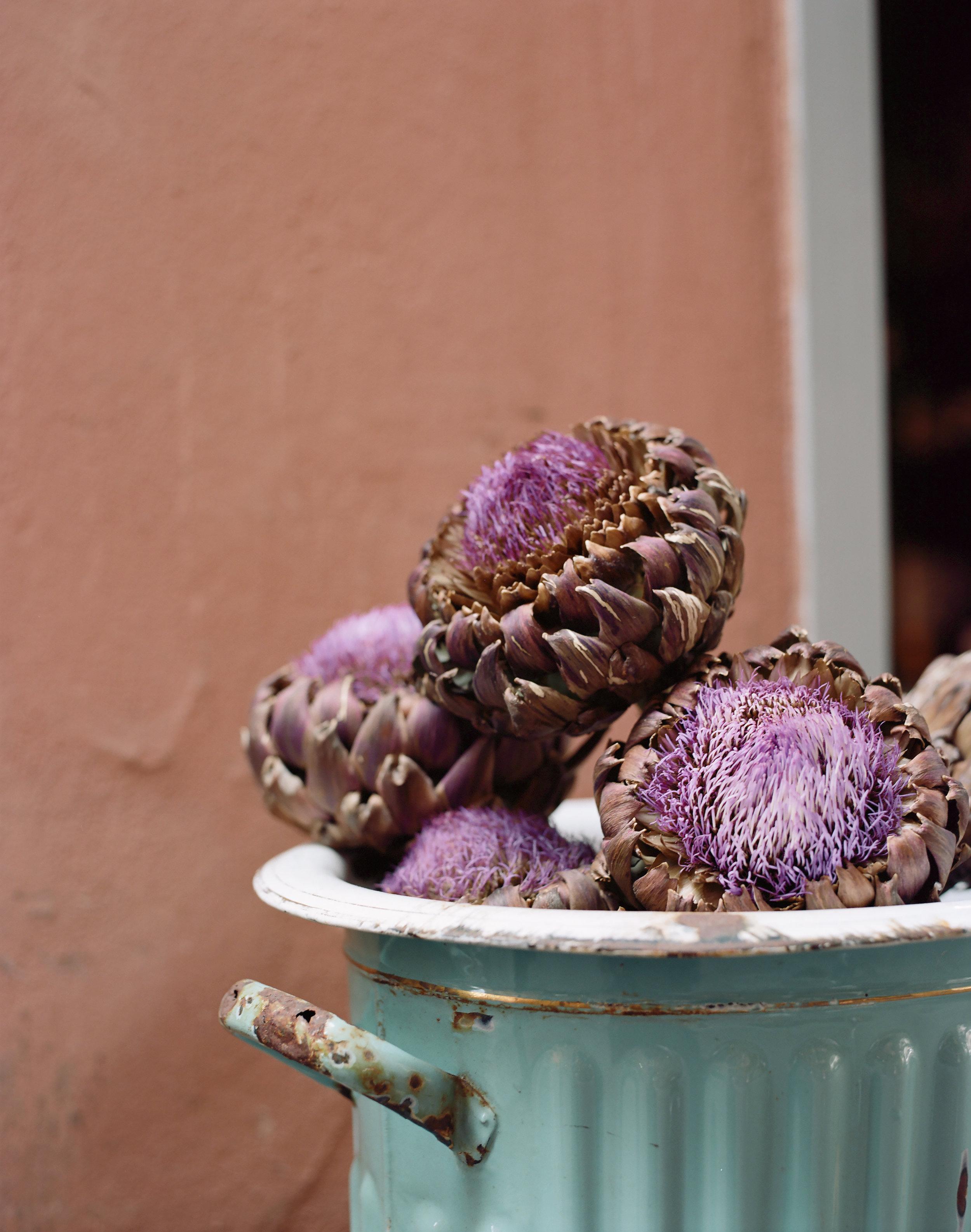 Flowering Artichoke Decoration