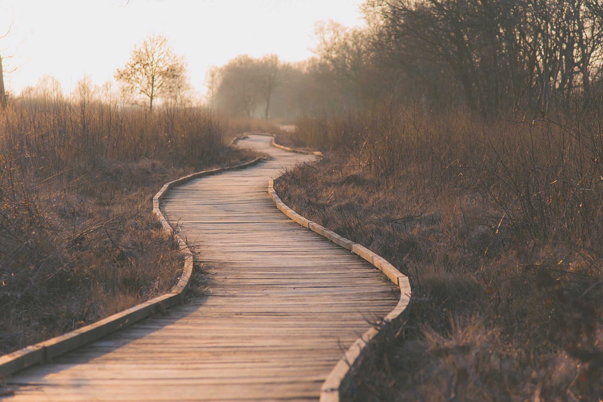 MINDFULNESS PRACTICES TO SUPPORT YOU ALONG THE MANY PATHS OF YOUR LIFE JOURNEY -