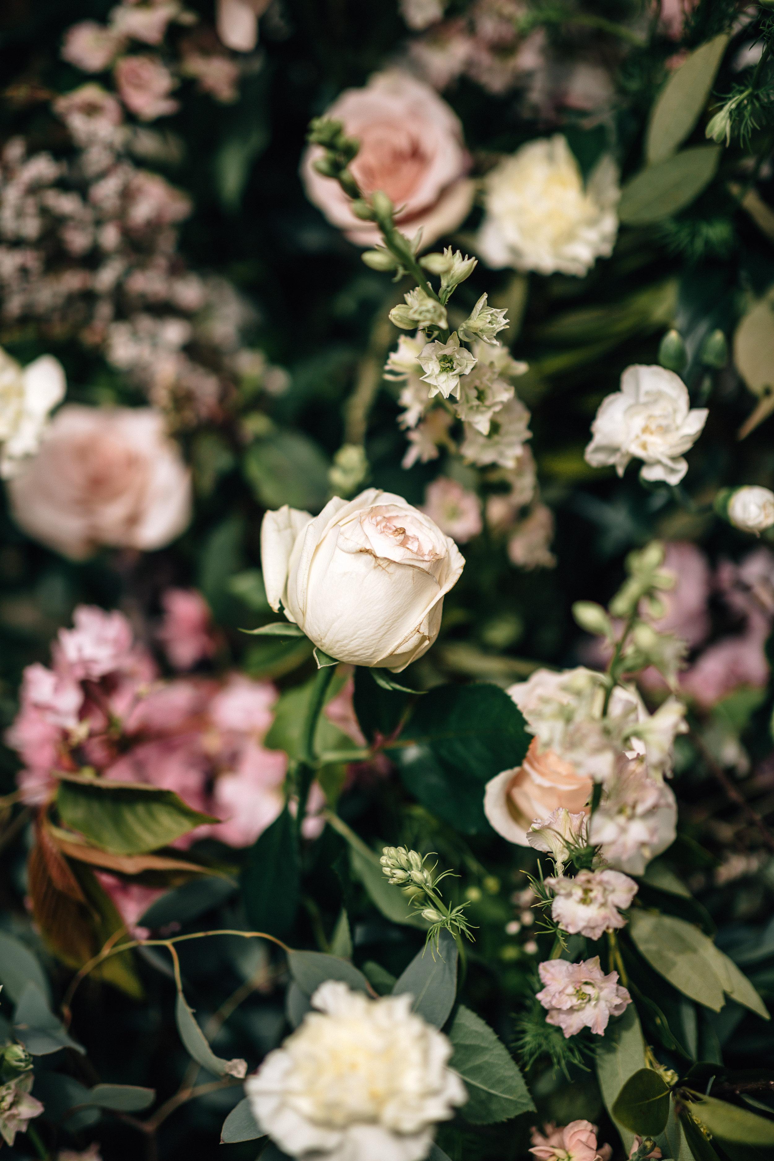 AmandaMegPhotography.jpg (71 of 135).jpg