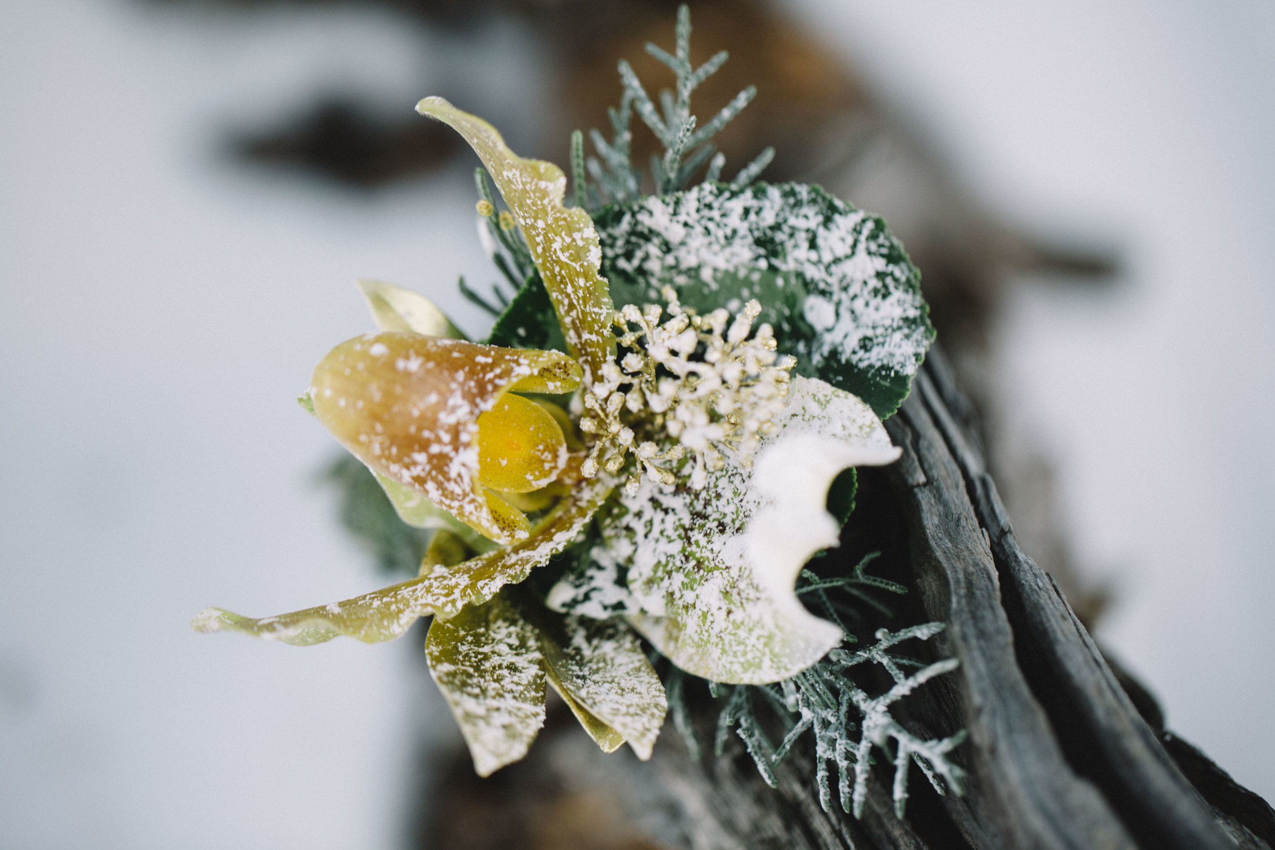 Mountain Winter Wedding 1-2.jpg