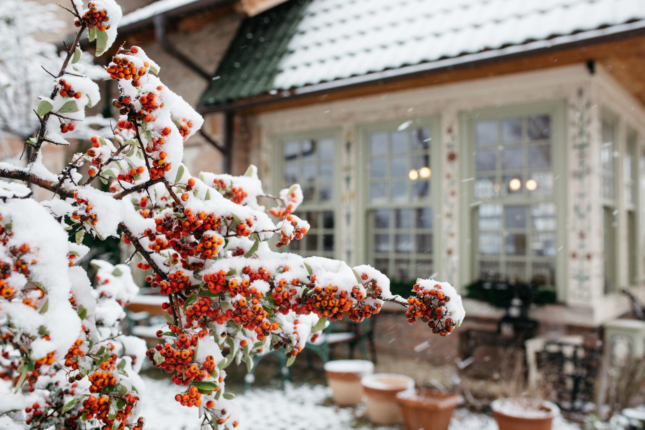 Winter Wedding Inspiration with Snow -02.jpg