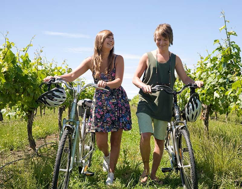 wine-15.jpg