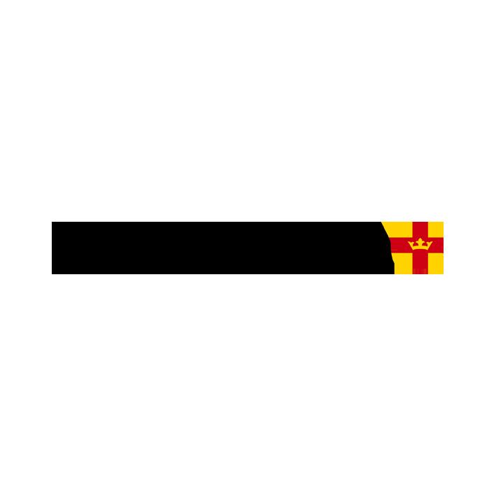 svenska-kyrkan-logo-wasabiweb.png