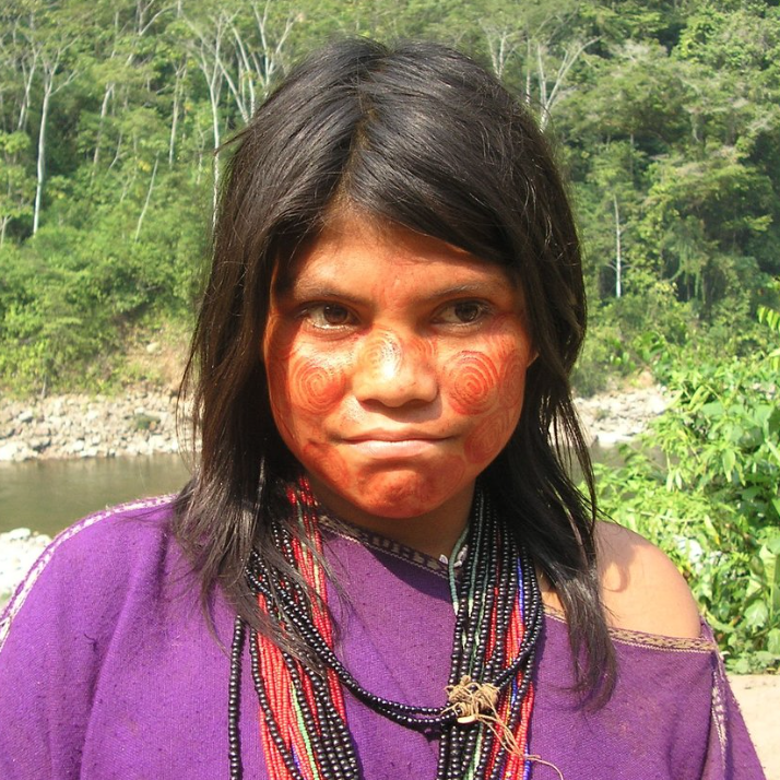 The Tribe - Asháninka land is in the rainforests of the lower Amazon basin in Peru. The Asháninka are known historically to be fiercely independent. They are striving to keep their cultural and environmental heritage despite pressure from the modernisation of the outside world. They live a lifestyle of subsistence but the forest they live in is under threat, particularly from illegal logging, palm oil production, and Coca growing for cocaine production.Cacao is a vital crop for the Asháninka because it is best operated within a co-operative, which is perfect for the communal living of the tribe, provides protection of their land, they can promote organic and traditional farming methods and is a cash crop so that they can maintain their economic independence and sovereignty.Image Courtesy of Dilwyn Jenkins