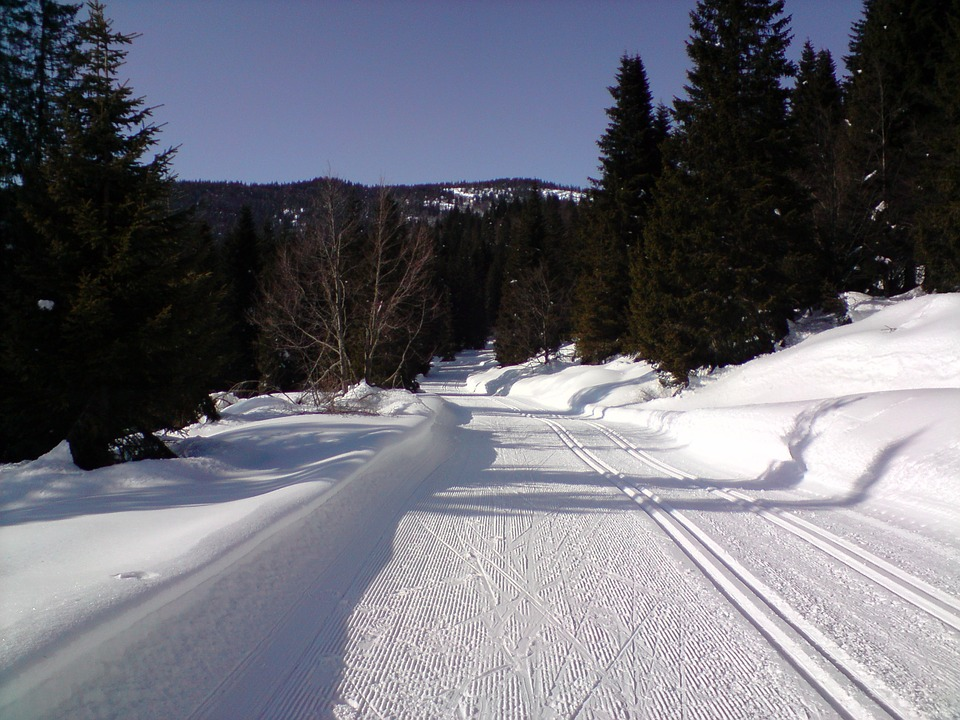ski-trails-599641_960_720.jpg