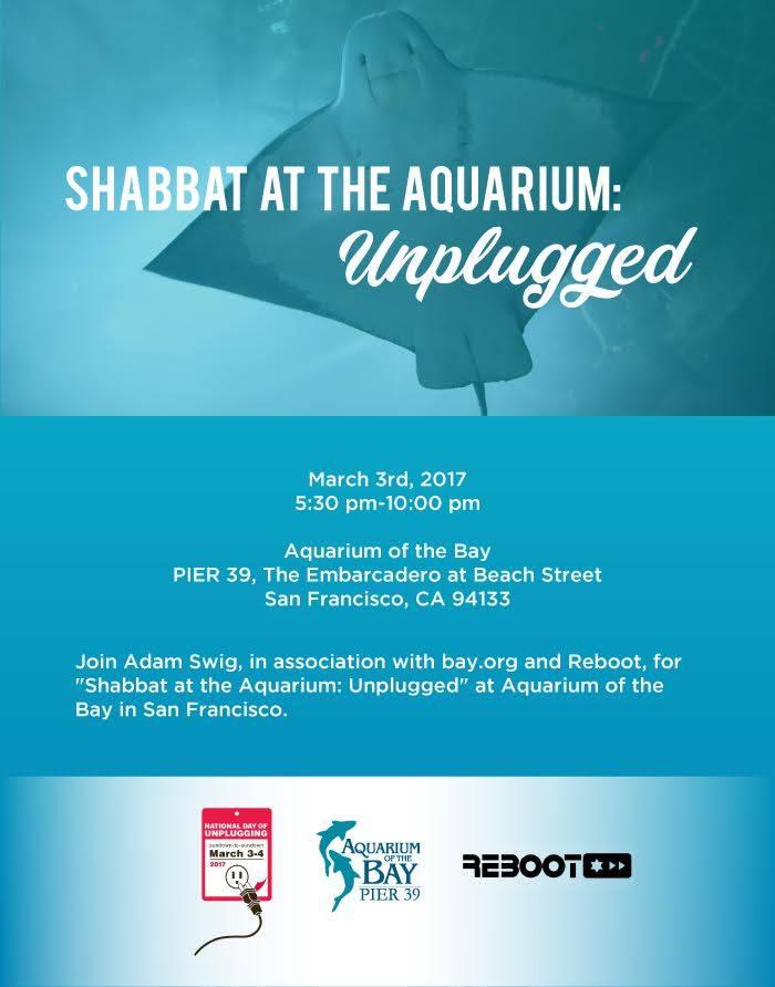 ShabbatatAquarium (1).jpg