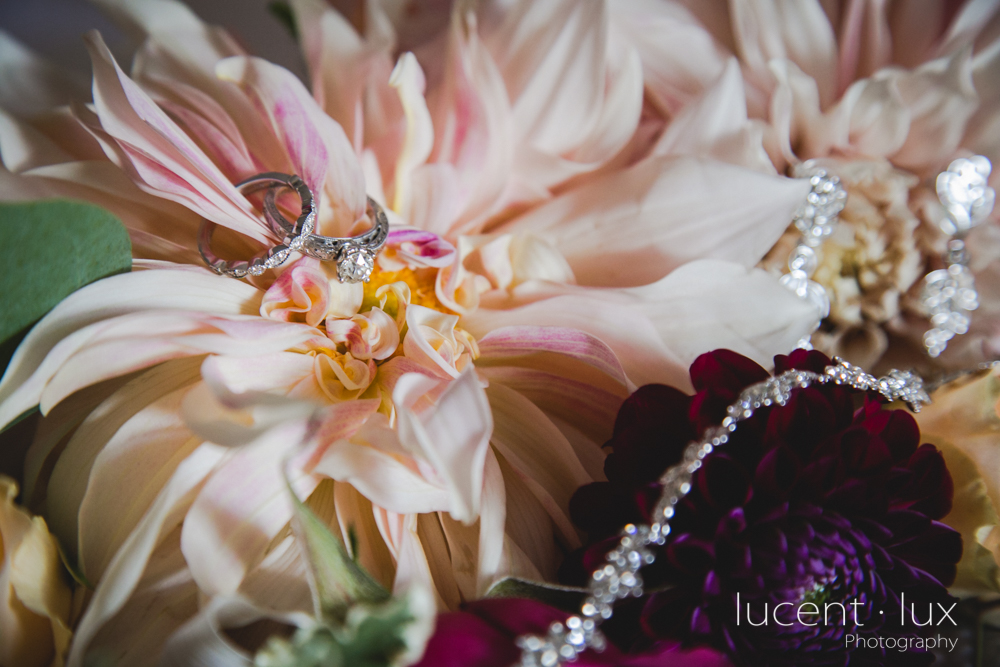 Antrim_Country_House_Hotel_Taneytown_Maryland_Wedding_Photography_Photographer_Engagement-103_Lucent_Lux_Photography.jpg