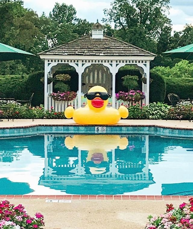 """The perfect way to """"stay cool"""" in this late August heat 😎 ⠀⠀⠀⠀⠀⠀⠀⠀⠀ ⠀⠀⠀⠀⠀⠀⠀⠀⠀ ⠀⠀⠀⠀⠀⠀⠀⠀⠀ #antrim1844 #forbestravel #ForbesTravelGuide #nytimestravel #beautifulhotels #beautifulhotelsoftheworld #luxuryhotel #luxuryhotelsworld #luxuryhotelsoftheworld #eleganthotel #marylandhotels #marylandbedandbreakfast #bedandbreakfastit #bedandbreakfastqualityoflife #bedandbreakfast"""