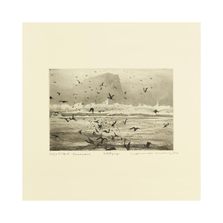 Erland Cooper - Murmuration