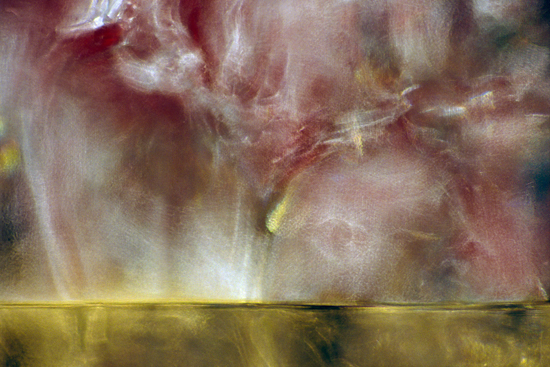 Alyson Denny,  Cabinet Glass Sessions #11,  pigmented inkjet print.