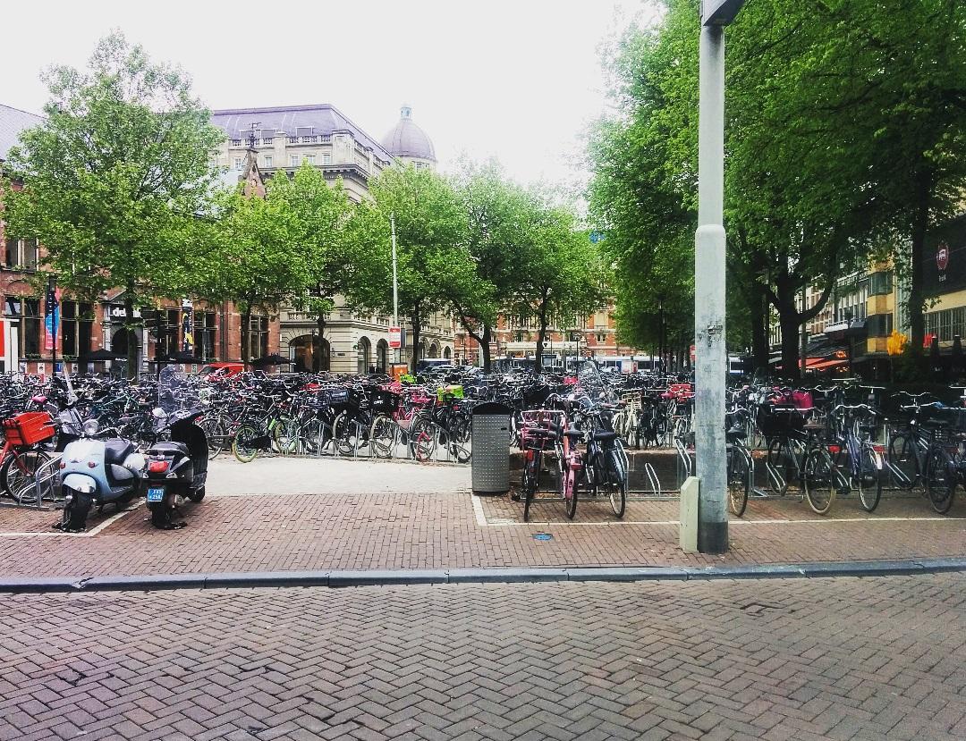 bikes bikes bikes.jpg