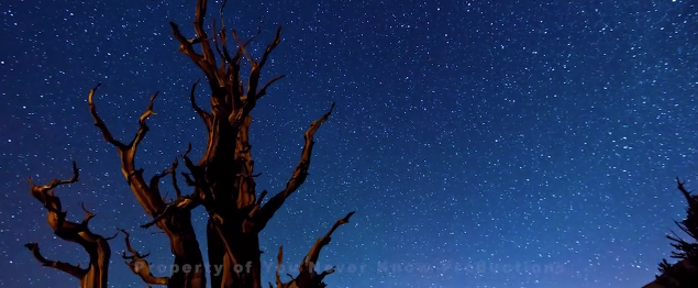 Footage of the night sky transitioning time throughout the film   [Source: You Never Know Productions]