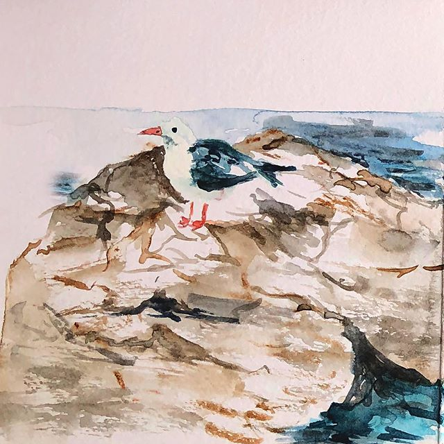The King of Cascais! And his kingdom 👉🏻 scroll to see 🌊 I found a really great art shop in Cascais that had accordion notebooks so I sat on the side walk and watched this confident seagull marvel at his kingdom from his rocky throne. And sure wouldn't  you marvel too if you were the King of Cascais! Long live the King! #longlivetheking #sketchbook 🌊🌊🌊🌊🌊🌊🌊🐠☀️ #plenair #watercolour #illustration #painting #notebook #seagull #Lisbon #cascais #portugal #seaside #summer #illustrator #womenwhopaint #artistsoninstagram #mindfulness