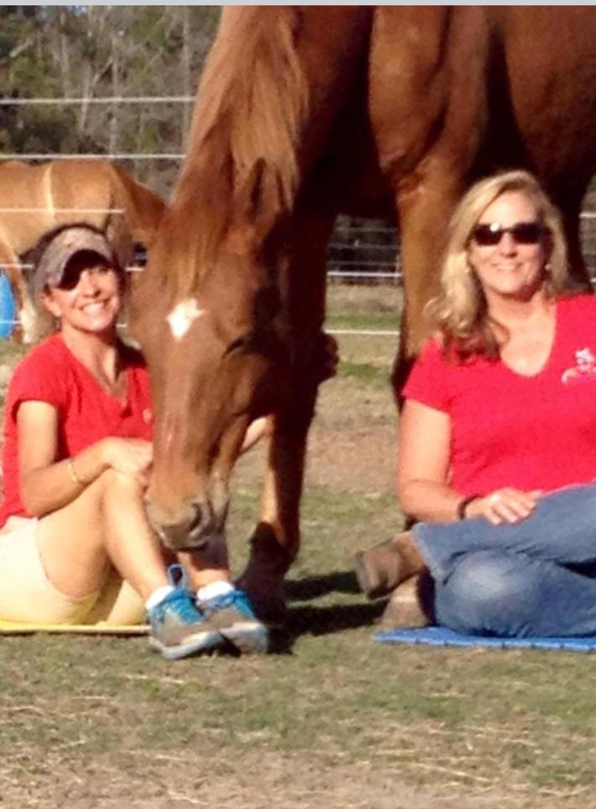 Sue McKinney - Barnabas Horse Foundation - August 19, 2018