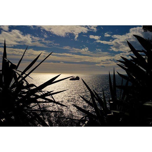 sunset. #cotedazur #leica  #staysalty #sealife #theglobewanderer #madeofocean #welivetoexplore #thewavecave #ic_water #roamtheplanet #travelphotography #visualoflife #beachlife #dametraveler #artofvisuals #islandhopping #flashesofdelight #thecreative #ig_masterpiece #beachvibes #france_vacations #wu_france #france_photolovers #unlimitedfrance #exclusive_france #leicacamera #leicacraft #leicam #leicaq