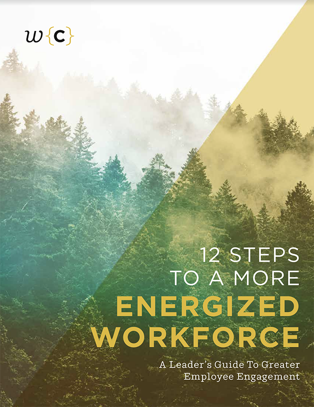 12 Steps to a More Energized Workforce - The challenges faced by leaders today are more complex than ever. A lack of engagement leads to a lack of productivity, higher turnover, and missed opportunities. This White Paper explains the roots of the problem, and suggests a series of potential solutions.