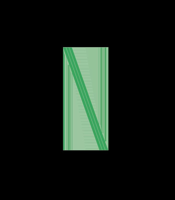 Nous_color N Logo-1.png