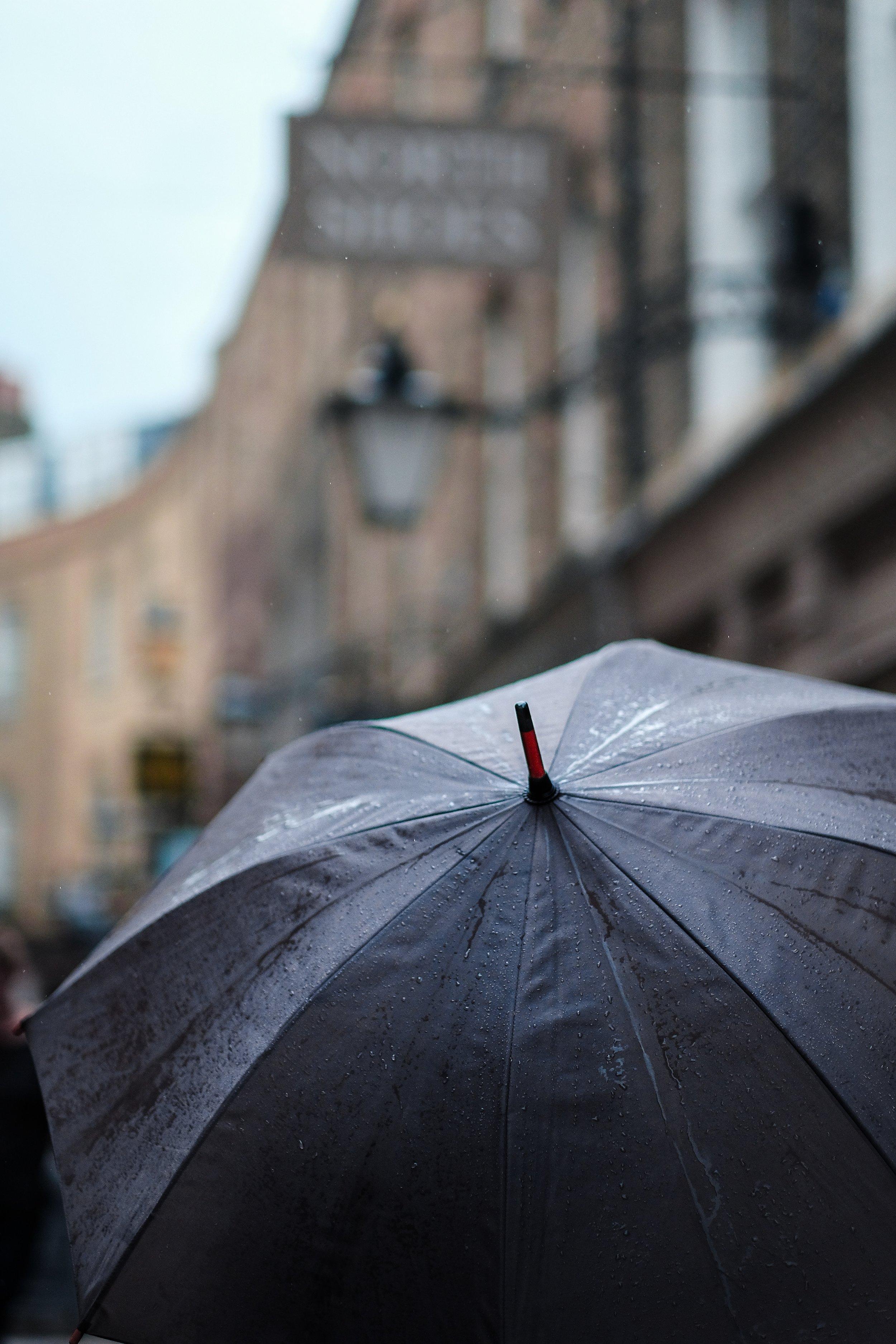 craig-whitehead-280825 umbrella.jpg