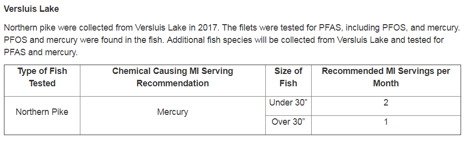 Courtesy of the Michigan Department of Health and Human Services