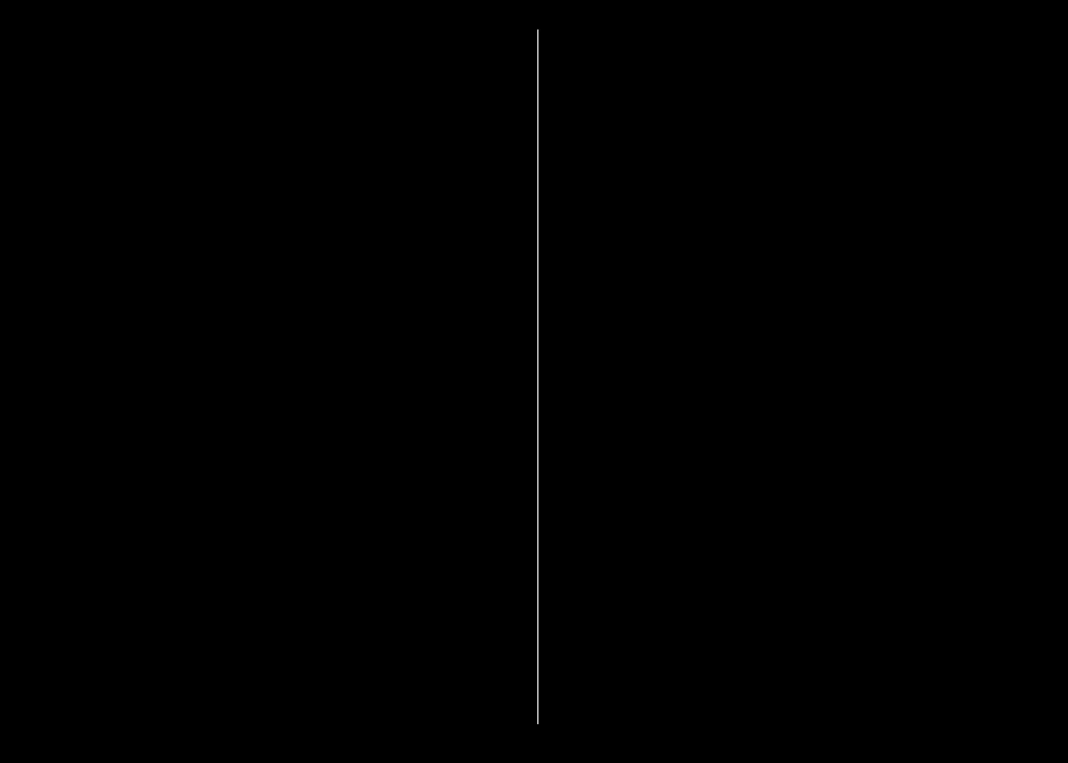 vertial line.png