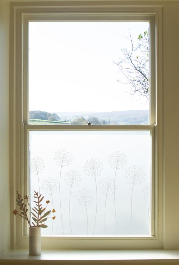Hannah Nunn Allium window film (from £30) -  Link here