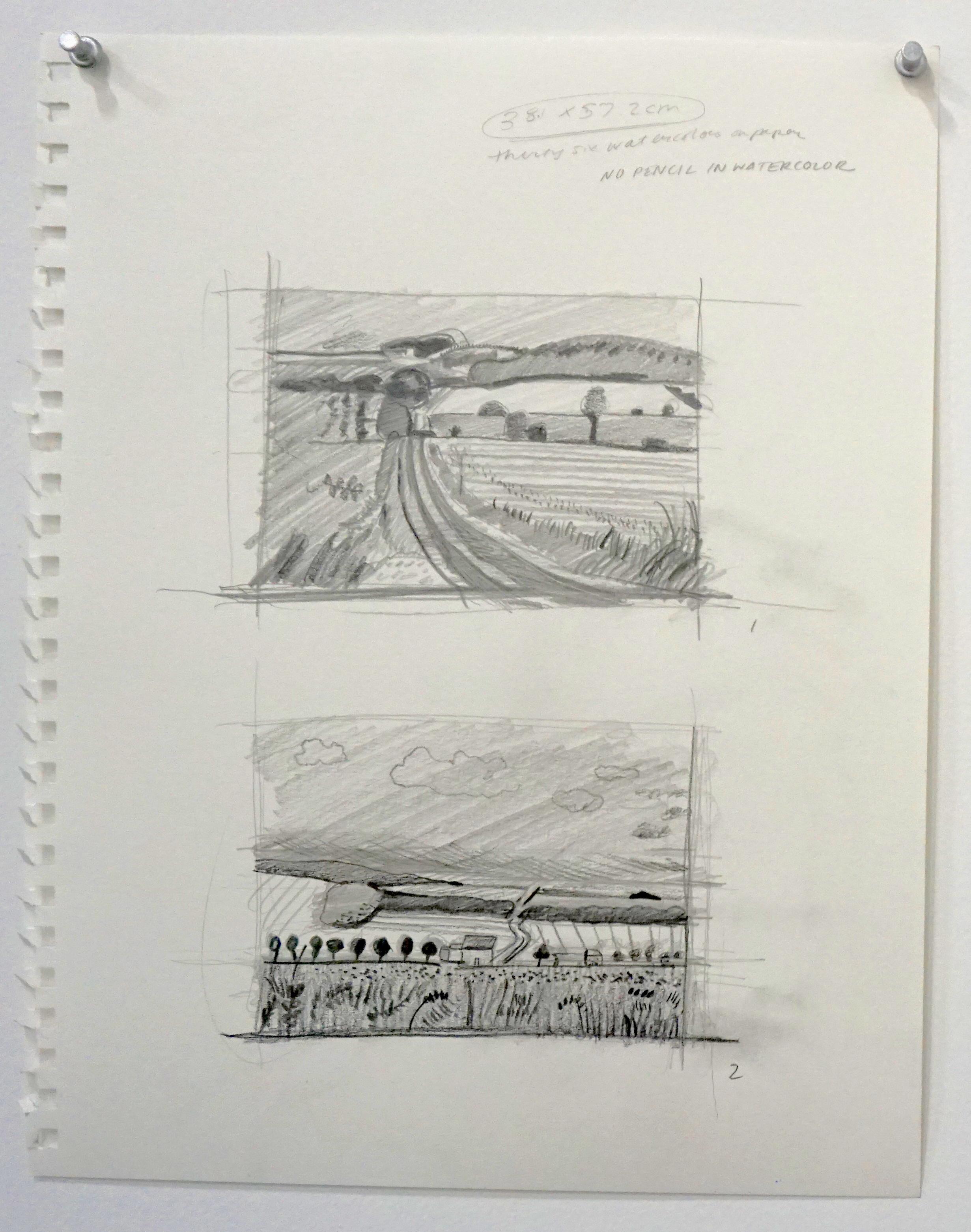 Hockney drawings by kerbi 1.JPG